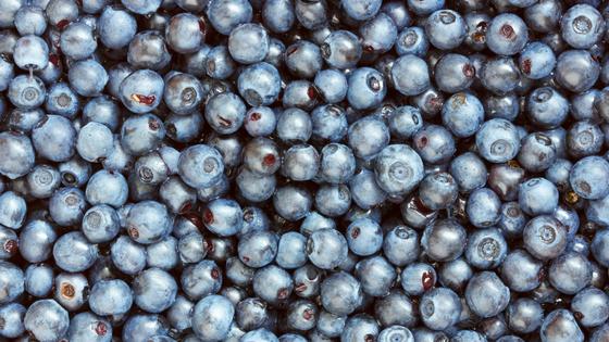 Recipe - Blueberry Yoghurt